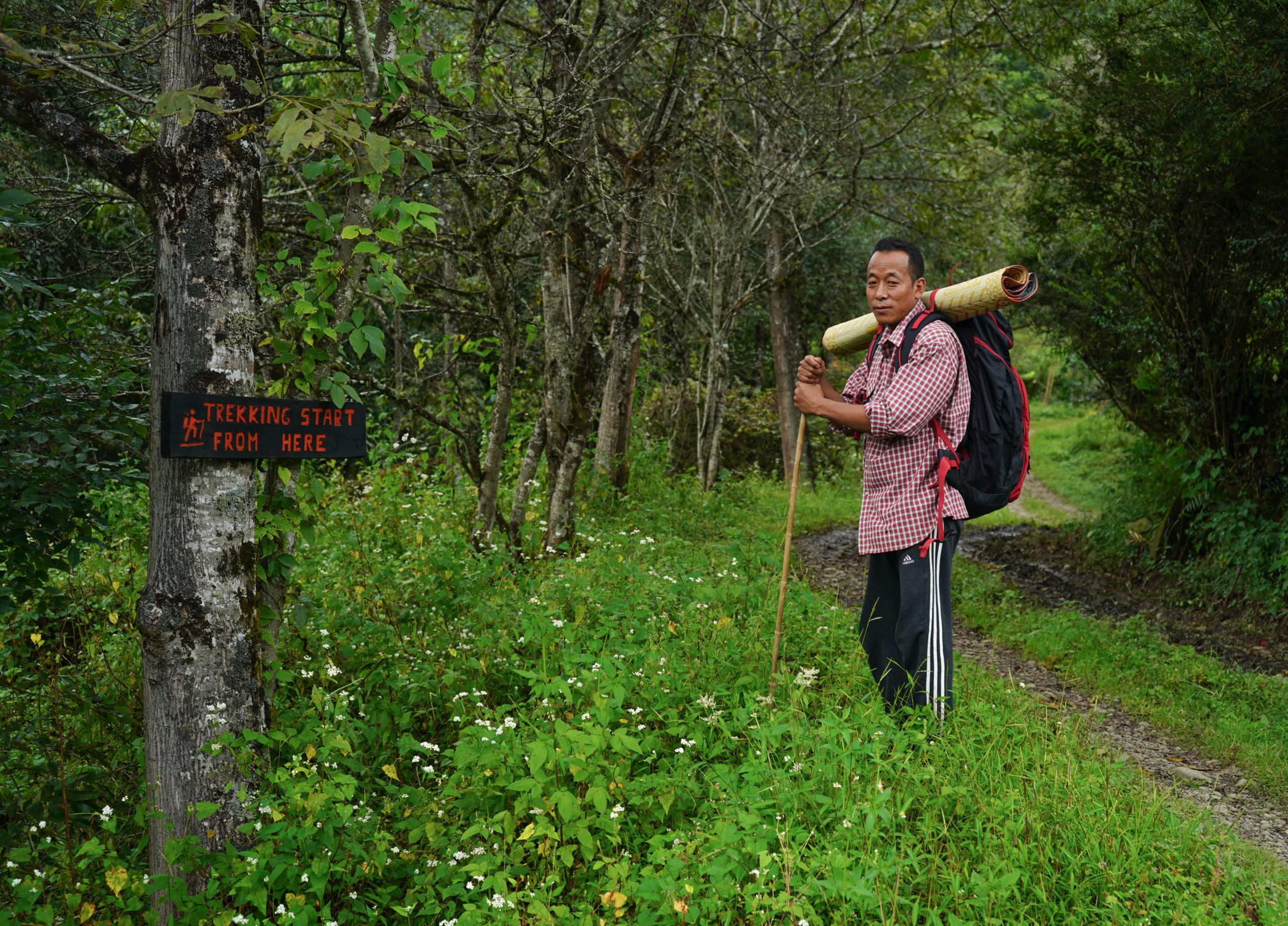 Forest Based livelihoods